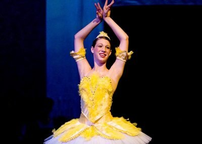 Ballet: Sleeping Beauty Songbird Fairy